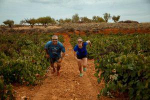 Utiel-Requena estará en una serie documental sobre los vinos Españoles