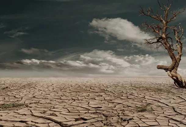 La sequía y las altas temperaturas amenazan los cultivos