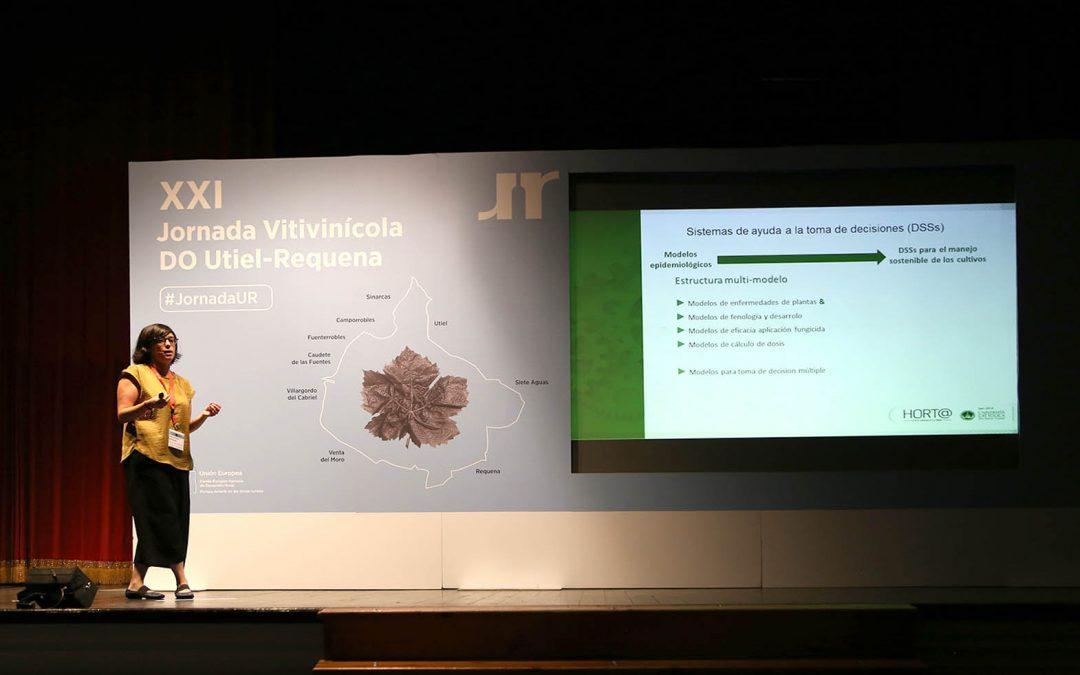 La DO anuncia en su XXI Jornada Vitivinícola el Proyecto #ValoraBobal