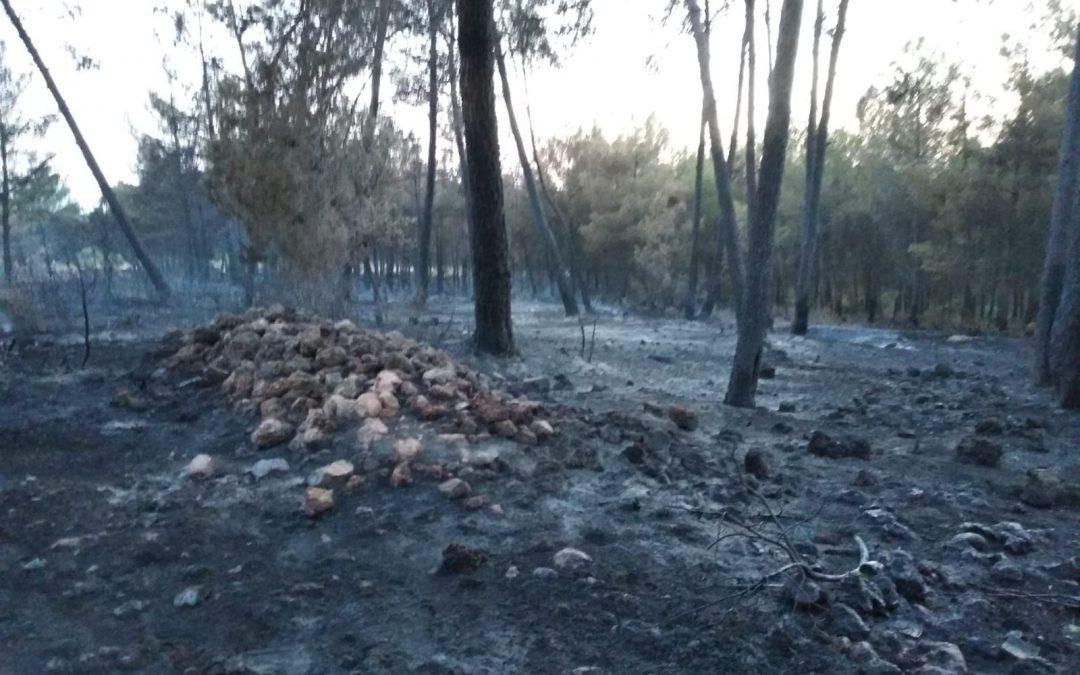 254 municipios reciben 1,5 millones de euros para elaborar planes locales de prevención de incendios forestales