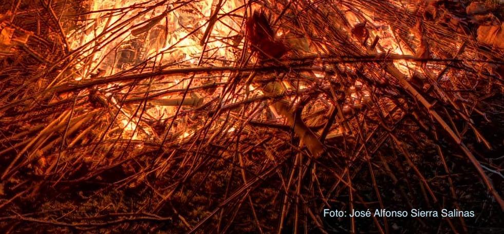 Puesta en marcha de cursos certificados sobre prevención de incendios forestales