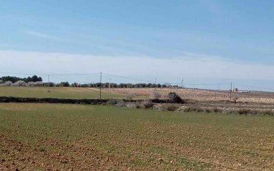 Las consecuencias de la sequía se han comenzado a notar en los sembrados