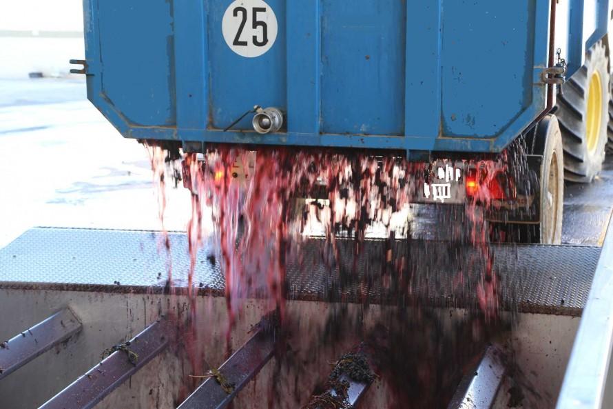 Los mercados se muestran incapaces de absorber los stocks de vinos que se han creado