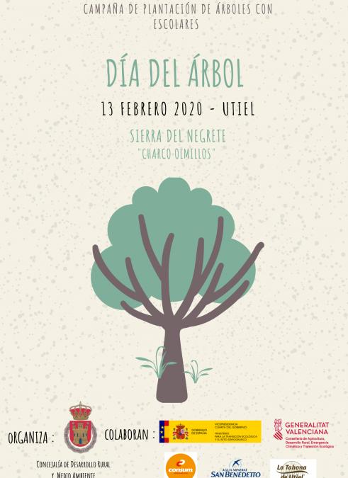 Utiel celebrará el Día del Árbol con la plantación de 1.000 ejemplares en la Sierra del Negrete.