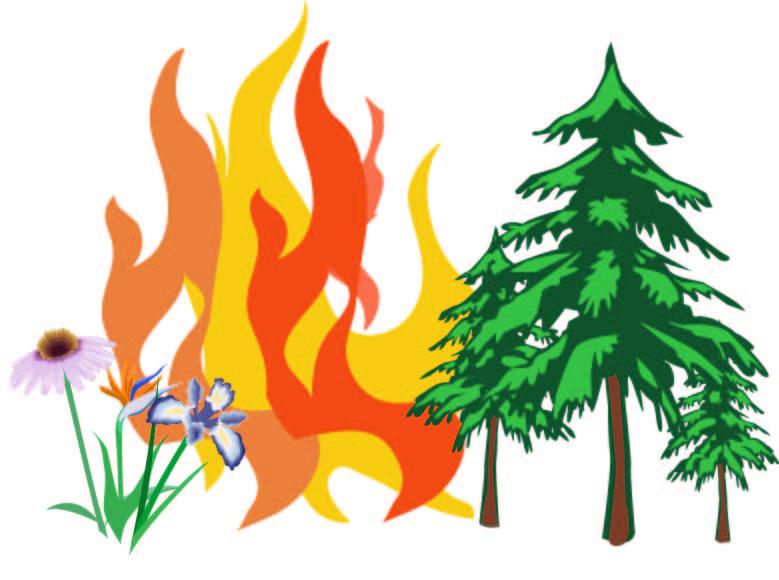 Prohibidas las quemas agrícolas hasta el 16 de octubre