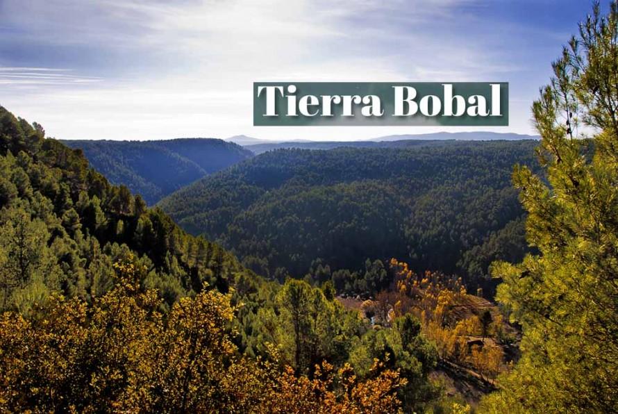 Tierra Bobal muestra su potencial turístico en la campaña 'El turismo que queremos'