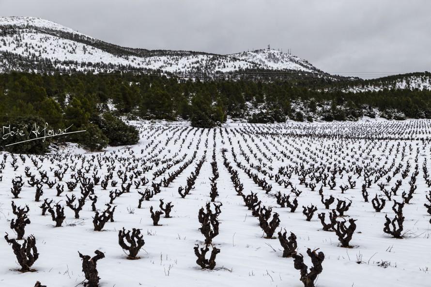 Avisos nivel rojo por el temporal de nieve en Utiel y comarca
