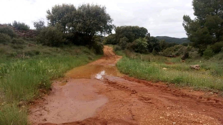 Las tormentas del domingo en Requena- Utiel y el Valle de Ayora-Cofrentes serán muy beneficiosas para los cultivos agrícolas